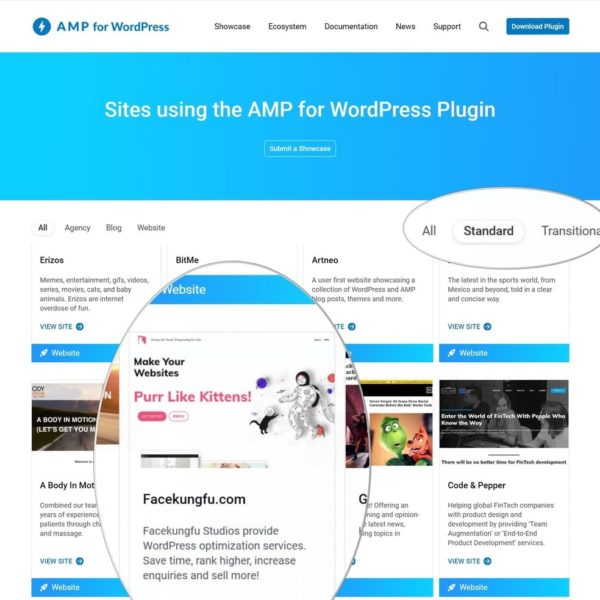 """We are qualified to AMP standard by Google """"AMP for WordPress""""!"""