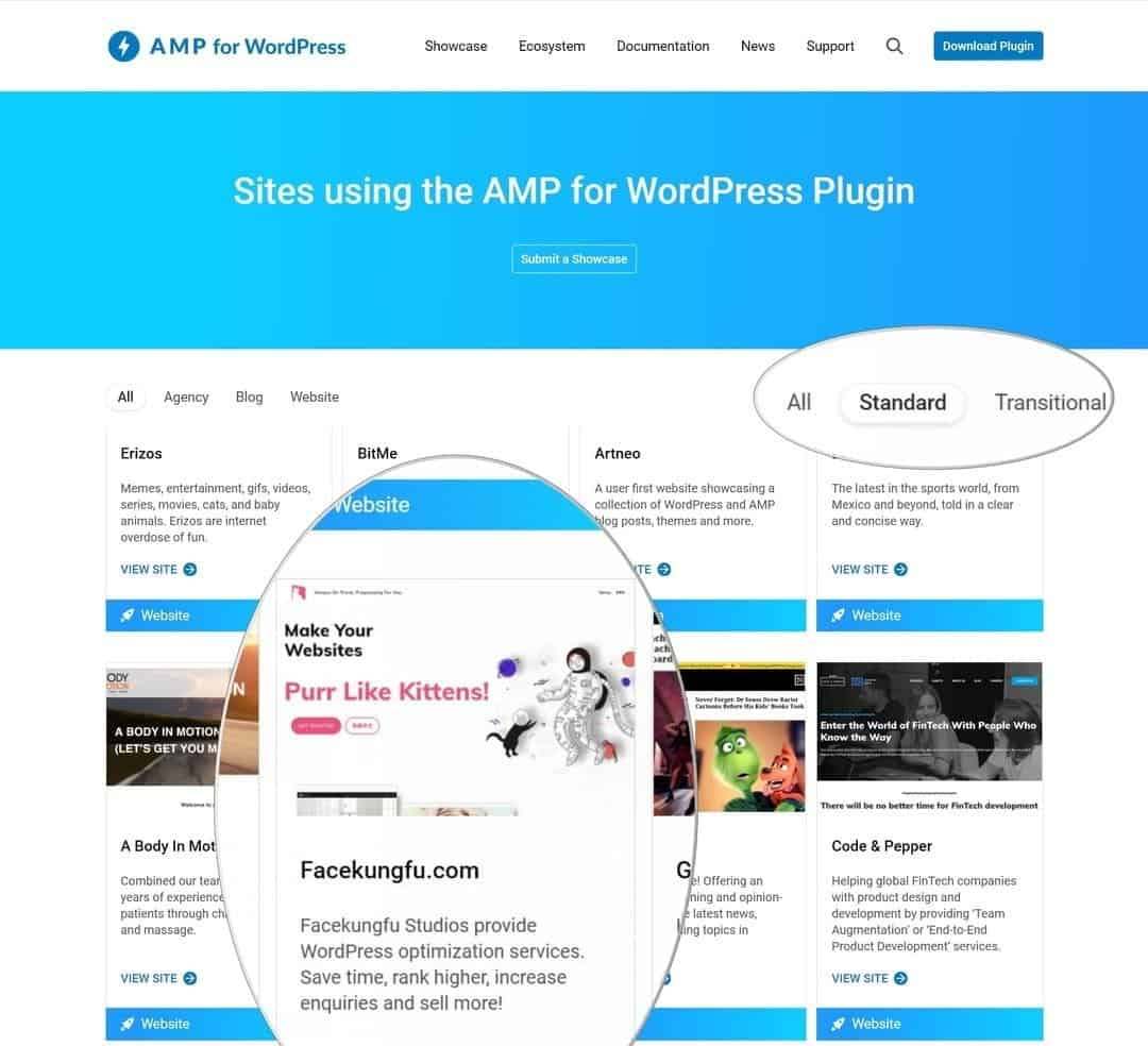 "We are qualified to AMP standard by Google ""AMP for WordPress""!"
